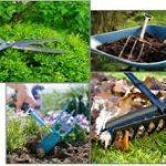 Kurs ogrodniczy